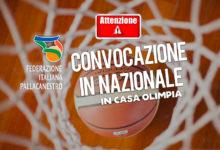 Photo of E' arrivata la convocazione Nazionale in casa Olimpia Roma