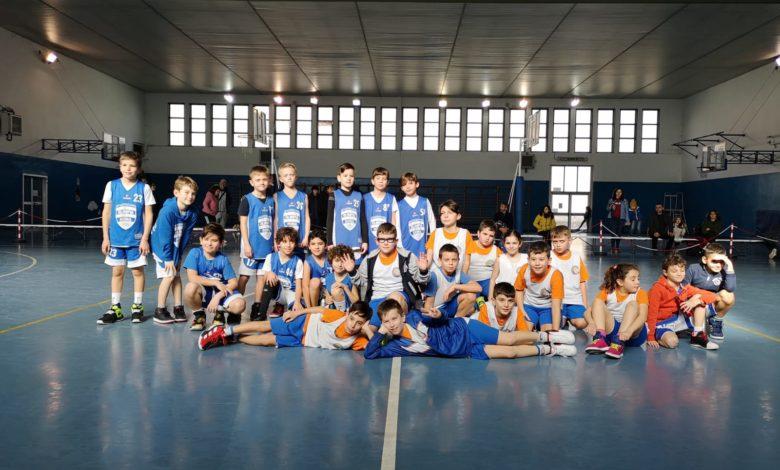 Tigrotti Asi Gold Olimpia - Ponte di Nona  14 - 10 1
